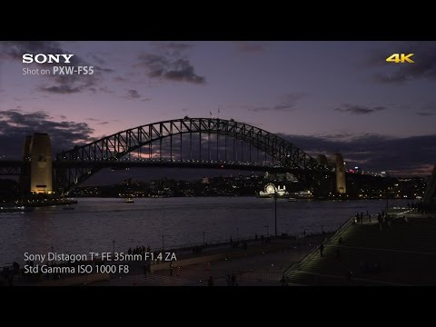 PXW-FS5 Official Sample 4K Video | Sony Professional