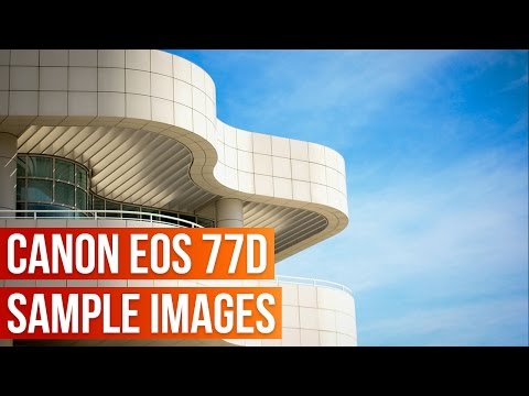 Canon EOS 77D Sample Images