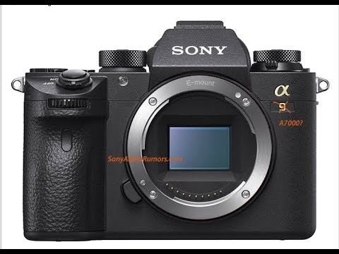 Sony a7000 delayed till March 2019?