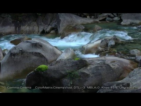 Atera Mountain Stream ~ GY-LS300 Video Mode Comparison