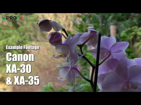 Canon XA30 & XA35 - Example Footage & High ISO Test