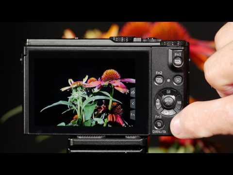 Panasonic LUMIX DMC-LX10 Display Settings