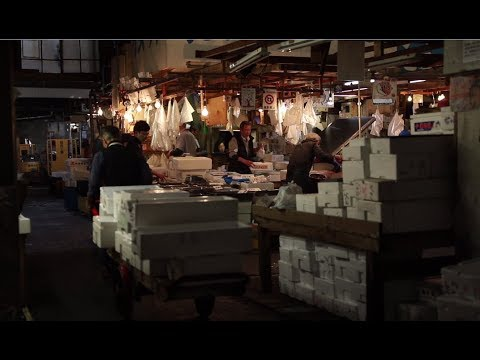Canon EOS 6D Mark II Sample Movie: Tsukiji