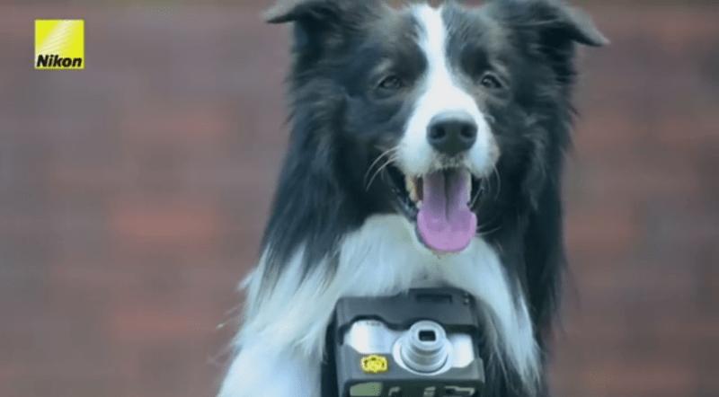 Nikon Heartography Camera