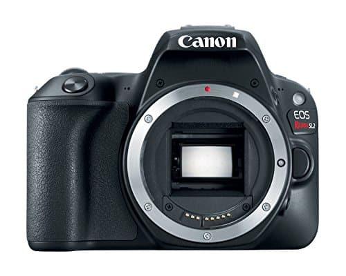 Canon EOS Rebel SL2 Review